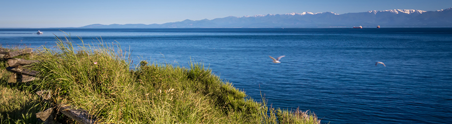 Victoria shore by Dallas road with Olympic mountain range view